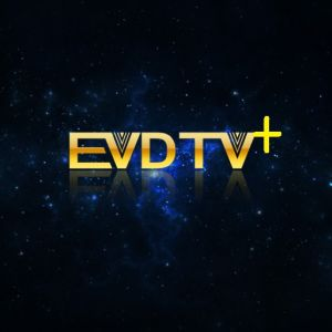 Evdtv-Hay-IPTV-France-IPTV-Turkey-Arabic-TV-Netherlands-3000-Channels-VOD-Epg-Working-on-Smart-TV-Android-TV-Box-Mag250-254